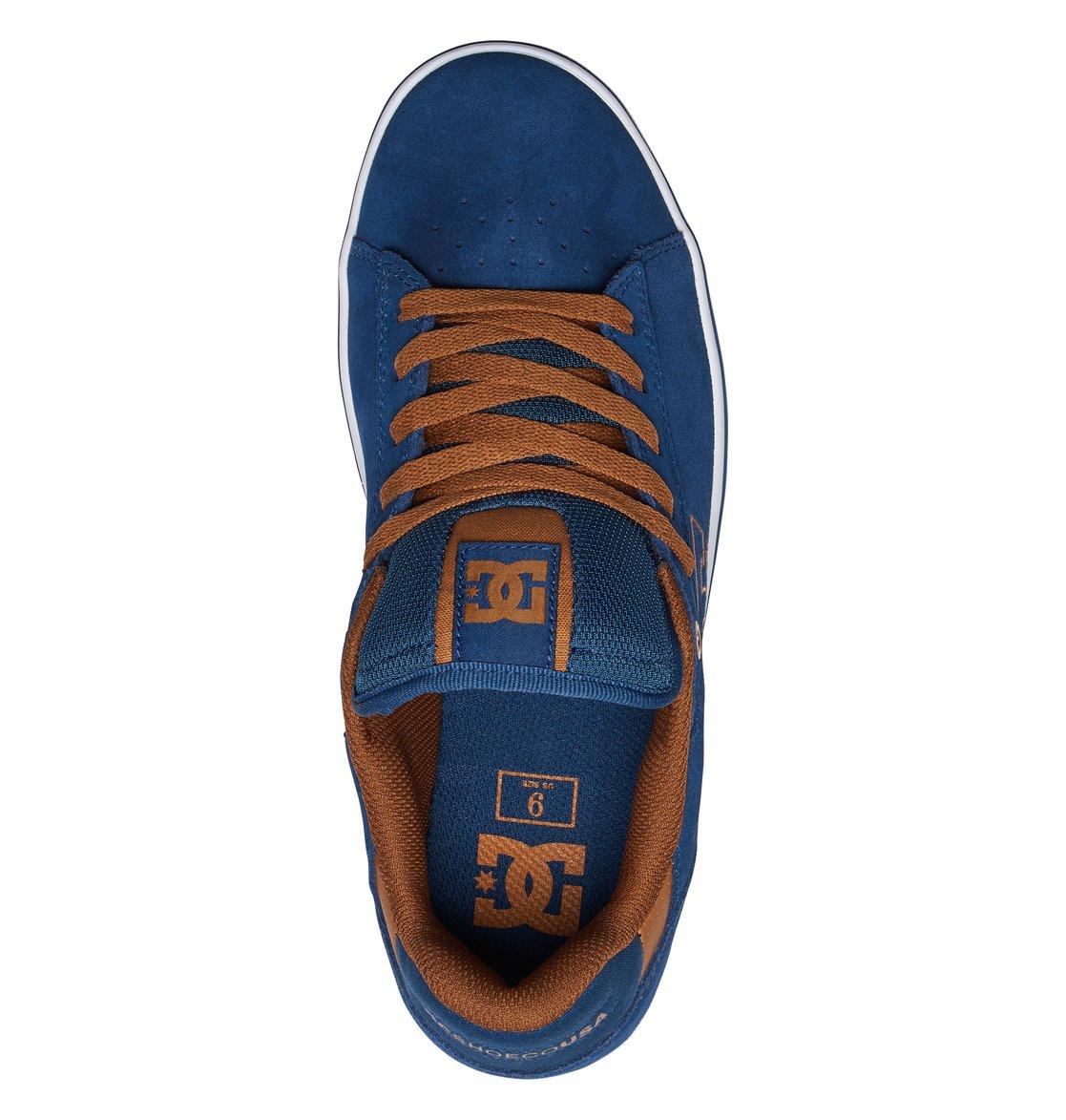 Notch Sd Blue Dc Shoes