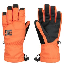 Seger -  Gloves  EDBHN03002