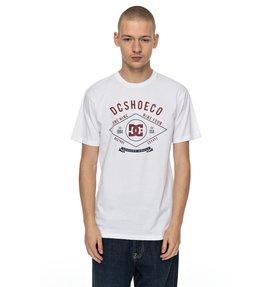 Melton - T-Shirt  EDYZT03708