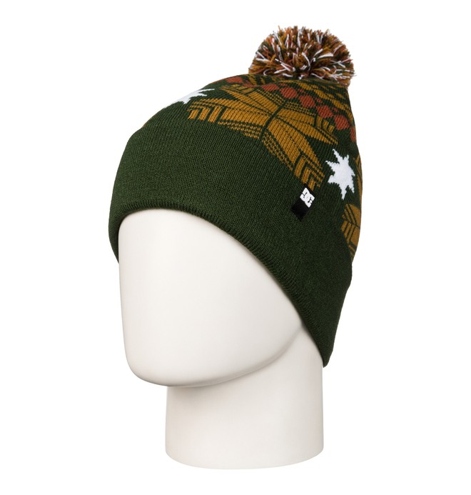 0 Men's Pinecone Beanie  ADYHA03050 DC Shoes