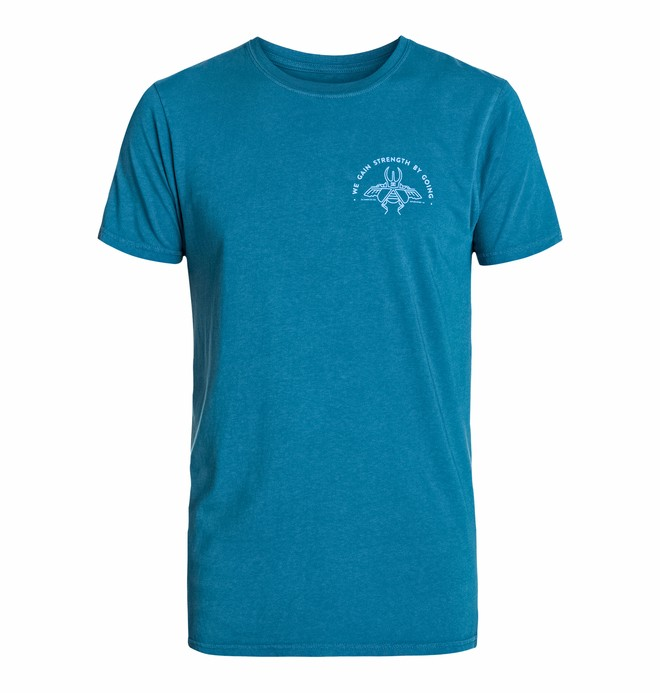 0 Men's Mikey Beetle Short Sleeve Screen Tee  ADYZT03151 DC Shoes