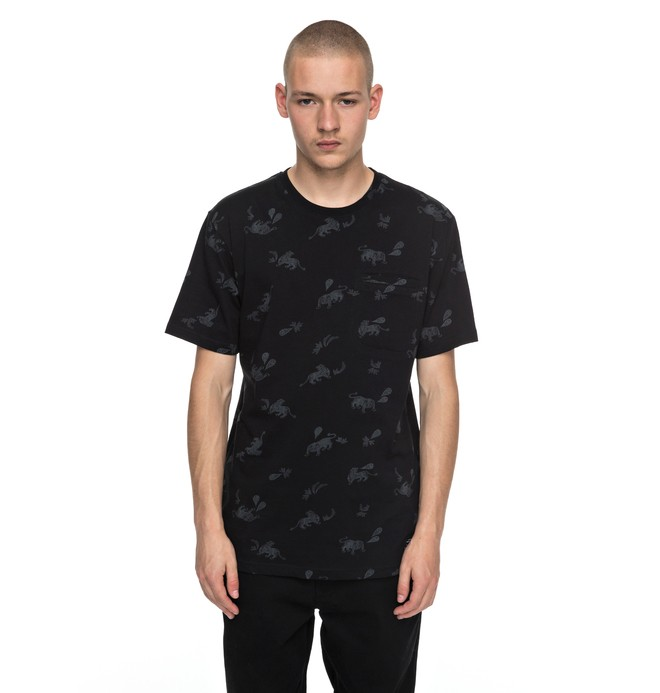 0 Pilkington - T-Shirt Black EDYKT03358 DC Shoes