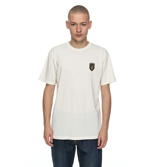 0 Siamenom - T-Shirt White EDYZT03697 DC Shoes