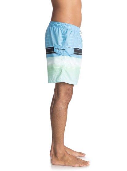 Пляжные шорты Swell Vision 17&amp;nbsp;<br>