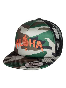 PINER TRUCKER  AQYHA03816