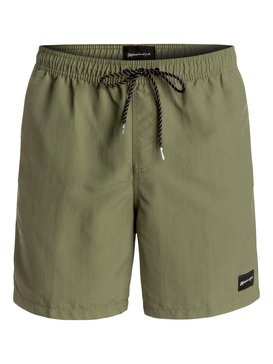 Mens Swim Shorts - Volleys & Swim Trunks | Quiksilver