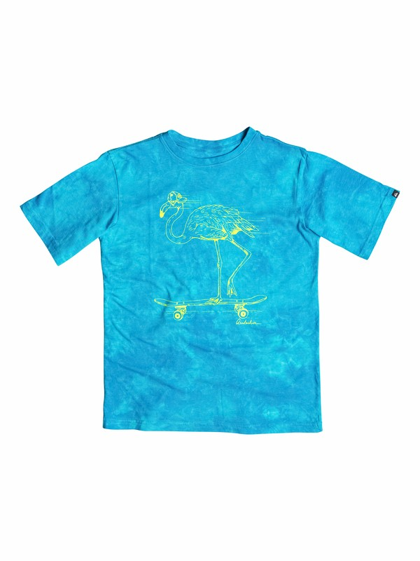 0 Boys 8-16 Rad Flamingo T-Shirt  40564177 Quiksilver