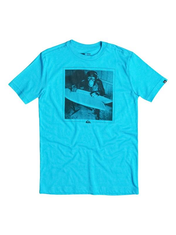 0 Boys 8-16 Shaping Banana T-Shirt  40664176 Quiksilver