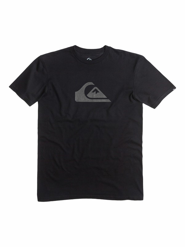 0 Boy's 8-16 Everyday Logo Core Tee  AQBZT03058 Quiksilver
