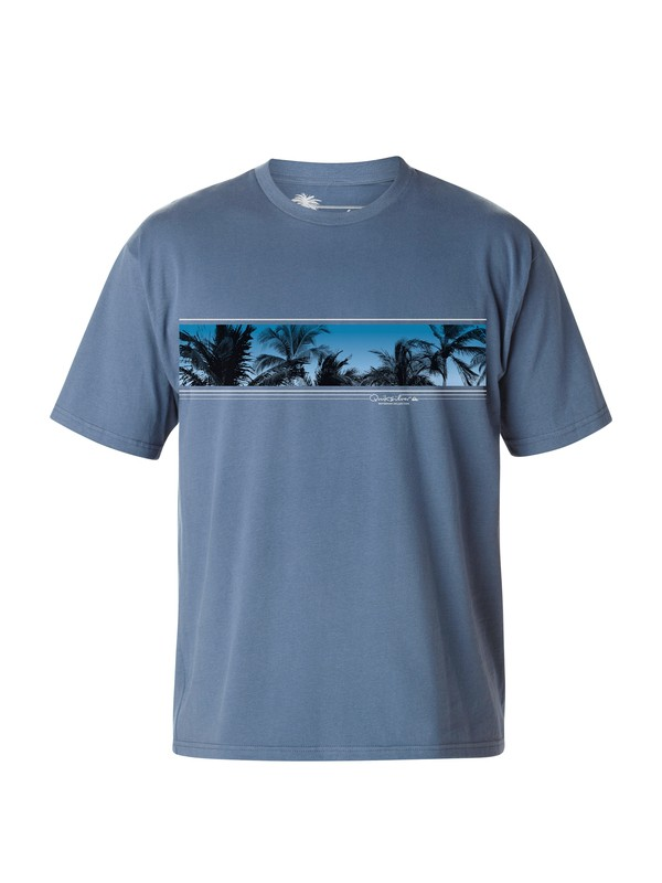 0 Men's Palm Shade T-Shirt  AQMZT03020 Quiksilver