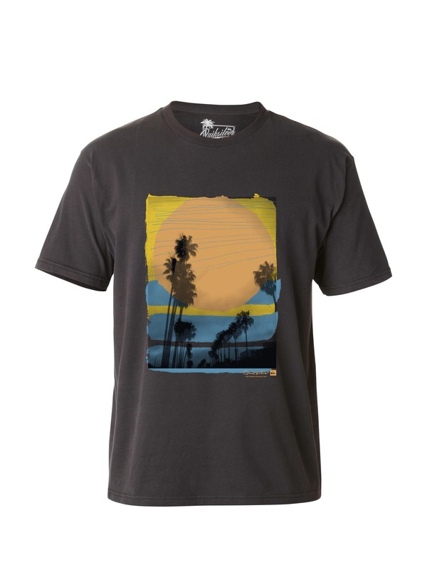 0 Men's Waterloo T-Shirt  AQMZT03028 Quiksilver