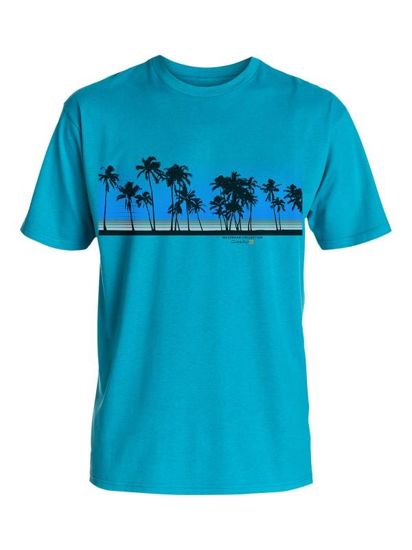 0 Men's Sunset Palms Tee  AQMZT03106 Quiksilver