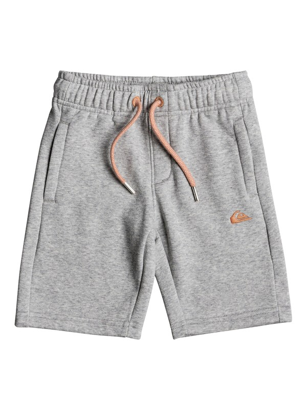 0 Everyday - Shorts de sport Gris EQKFB03049 Quiksilver
