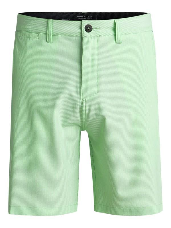 "0 Union Pinstripe 19"" Amphibian Shorts Green EQYWS03490 Quiksilver"