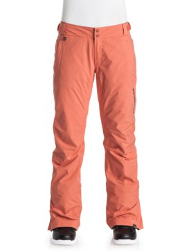 Rushmore 2L GORE-TEX - Snow Pants  ERJTP03030